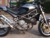 Ducati Monster Opal