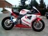 Honda CBR 600 RR Pramac