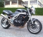 Speed Triple 955 Dark Lady